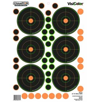 Champion Visicolor 25 Yd Small Bore Target 5 Pack w/90 pasters, Card